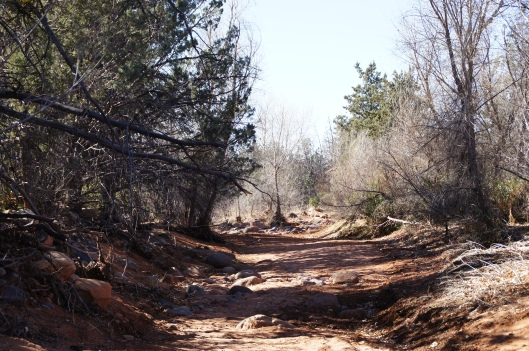 At the start of the hike, we crossed a dry creek bed. During summer monsoons, this could flood.