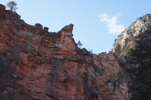 It's hard not to keep looking up at the cliffs along the way.