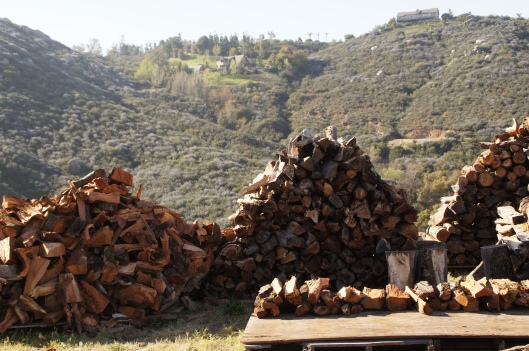 That said, it's good to know that the wood pile can remain as is. Until the next frosts come.